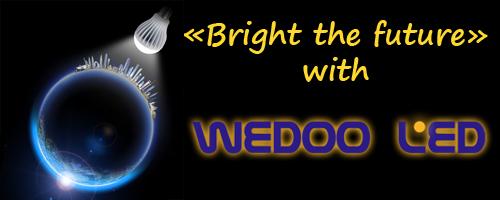 Wedoo lideró, la luz del futuro para nuestro planeta